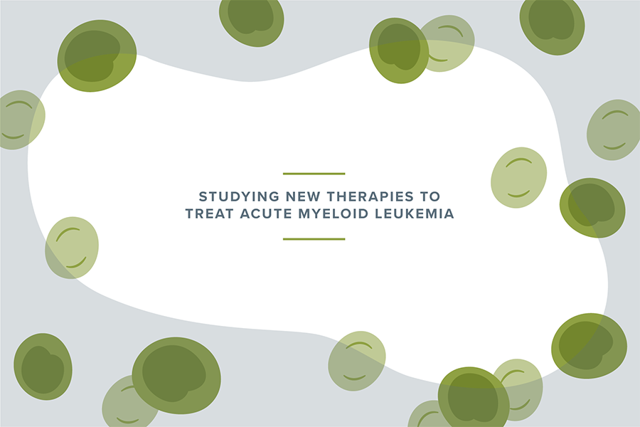 """""""Studying new therapies to treat acute myeloid leukemia"""" graphic"""""""