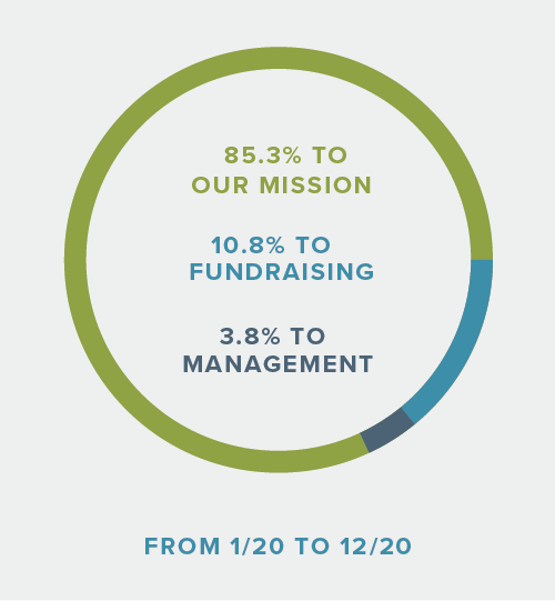Chart showing how donations are spent